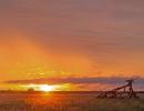 Morgens im Deception Valley - Central Kalahari