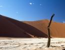 Dead Vlei - Namib Naukluft NP