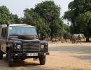 Karawane durchs Nyamepi Camp - Mana Pools, Simbabwe