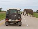 Road Block zwischen Kasane und Nata - unterwegs in die Kalahari