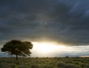 Thunderstorm über der Kalahari